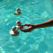 badeendje natuurlijk rubber eco in water