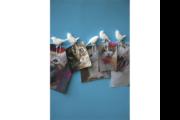 paperclip birds